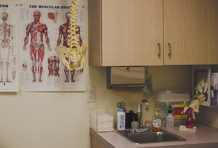 Muscle chart on office wall
